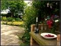 Rock Cottage Niton Isle of Wight (3)