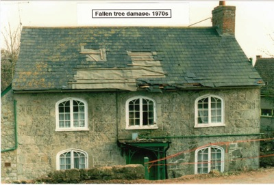 Photograph showing tree damage to Rock Cottage in the 1970s